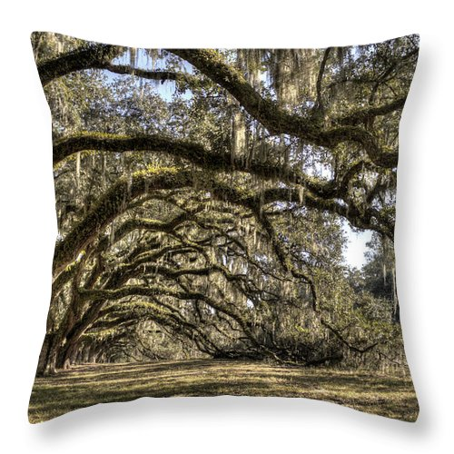 Live Oak Throw Pillow featuring the photograph Southern Live Oaks With Spanish Moss Color by Dustin K Ryan