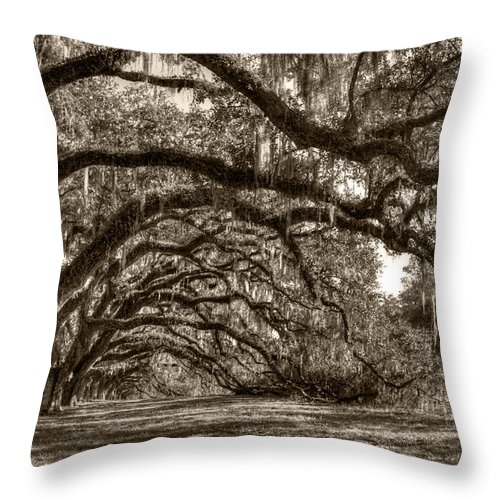 Live Oak Throw Pillow featuring the photograph Southern Live Oaks With Spanish Moss by Dustin K Ryan