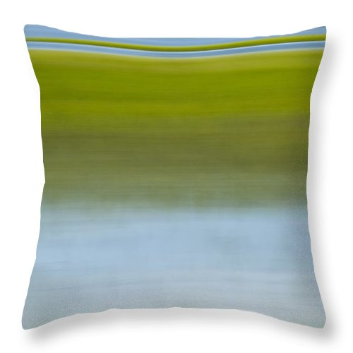 Southern Throw Pillow featuring the photograph Southern Marsh Motion by Dustin K Ryan