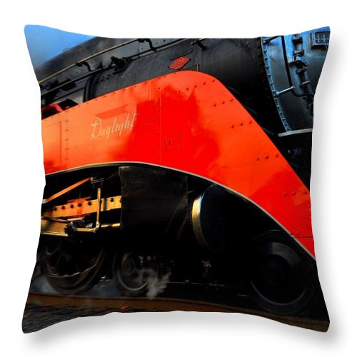 Sp 4449 Throw Pillow featuring the photograph Sp 4449 - 4 by Noah Cole