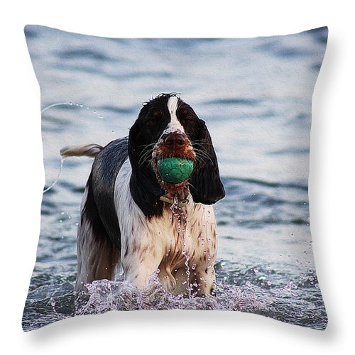 Dog Art Throw Pillow featuring the painting Spaniel Gundog by Queso Espinosa