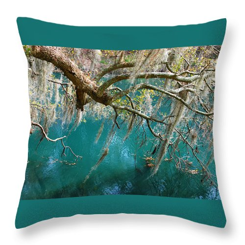 Emerald Green Water Throw Pillow featuring the photograph Spanish Moss And Emerald Green Water by Susanne Van Hulst