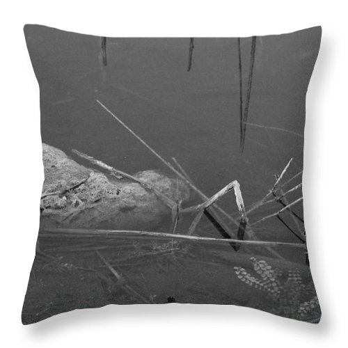 Black And White Throw Pillow featuring the photograph Spider In Water by Rob Hans