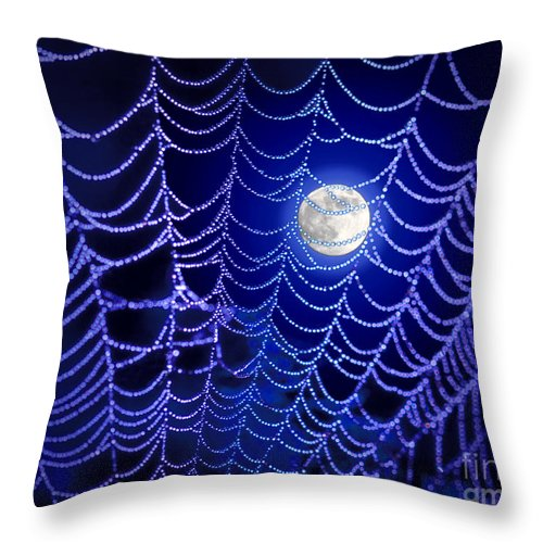 Spider Throw Pillow featuring the photograph Spider Web by George Robinson