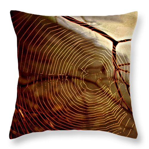 Light Throw Pillow featuring the photograph Spider Web by Thomas Firak