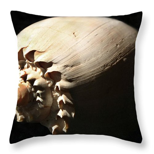 Shell Throw Pillow featuring the photograph Spirals by Mary Haber