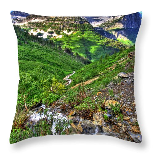 Landscape Throw Pillow featuring the photograph Spires And Stream by Scott Mahon
