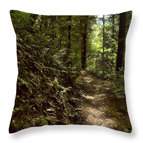 Landscape Throw Pillow featuring the photograph Spirit Of The Wood by Karen W Meyer