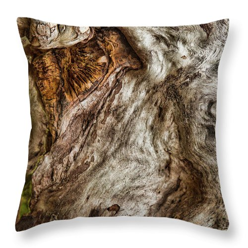 Throw Pillow featuring the photograph Spirit Of Trees by Marilyn Cornwell