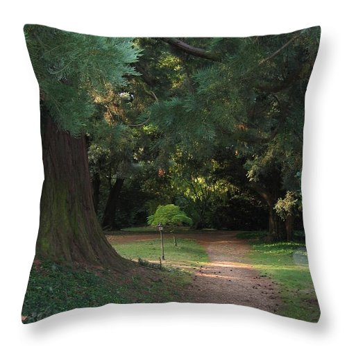 Arthur Findlay College Throw Pillow featuring the photograph Spirit Orbe by Lizzy Forrester