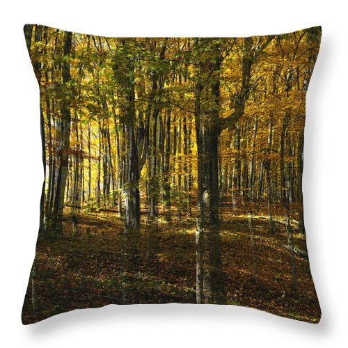 Woods Throw Pillow featuring the photograph Spirits In The Woods by Tim Nyberg