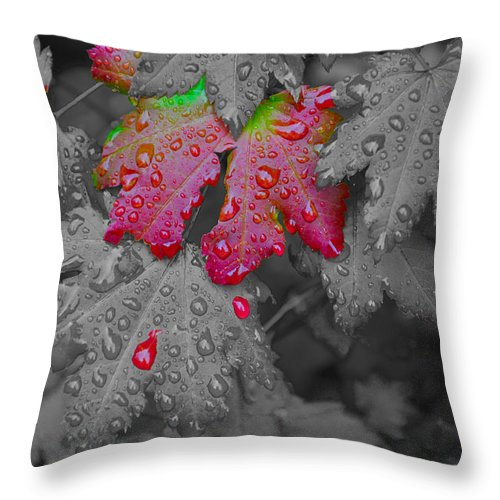 Hand Coloring Throw Pillow featuring the photograph Splash Of Color by Noah Cole