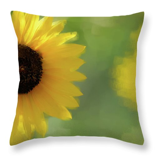 Sunflower Throw Pillow featuring the photograph Splash Of Yellow by Betty LaRue