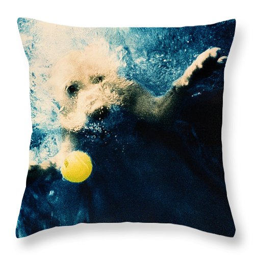 Dog Throw Pillow featuring the photograph Splashdown by Jill Reger