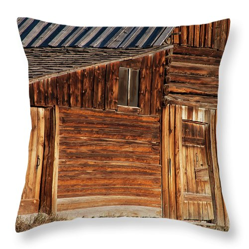 Jackson Hole Throw Pillow featuring the photograph Splinters by Bob Phillips