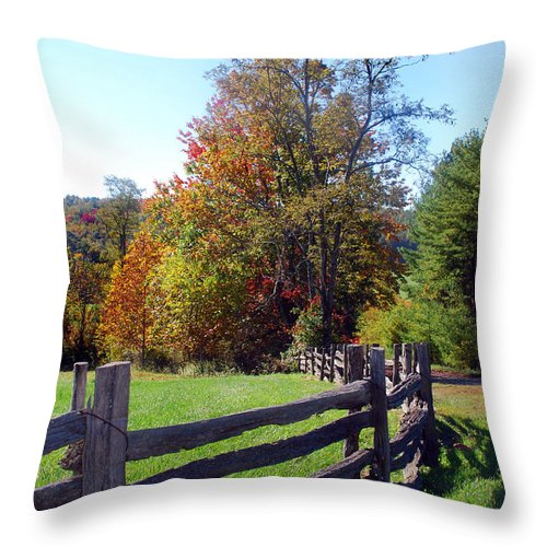 Scenic Tours Throw Pillow featuring the photograph Split Rails by Skip Willits