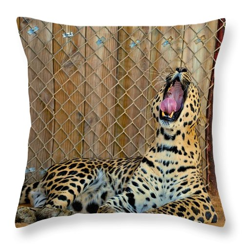 Leopards Throw Pillow featuring the photograph Spot by Donna Shahan