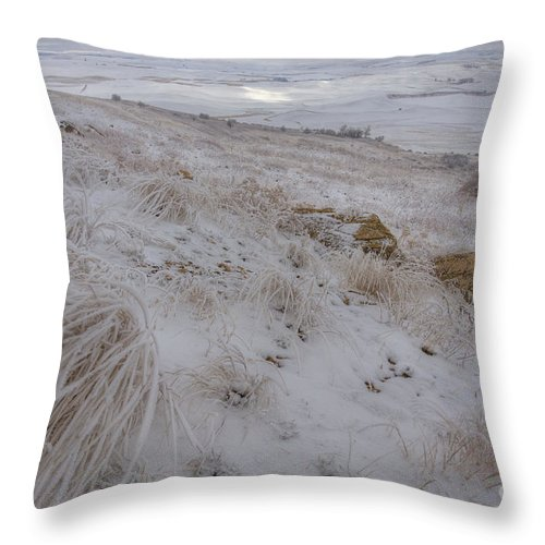 Ice Throw Pillow featuring the photograph Spot Of Sun by Idaho Scenic Images Linda Lantzy