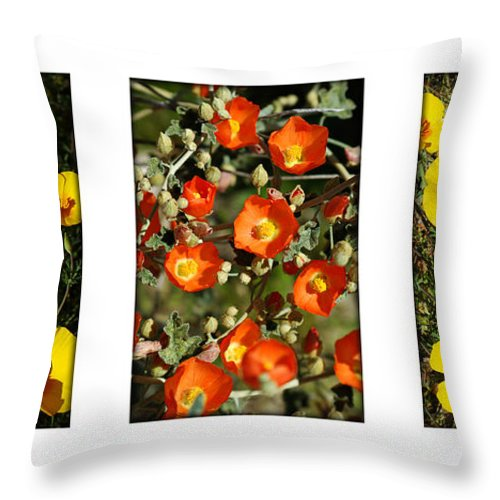 Arizona Throw Pillow featuring the photograph Spring - Desert Style 2 by Jill Reger