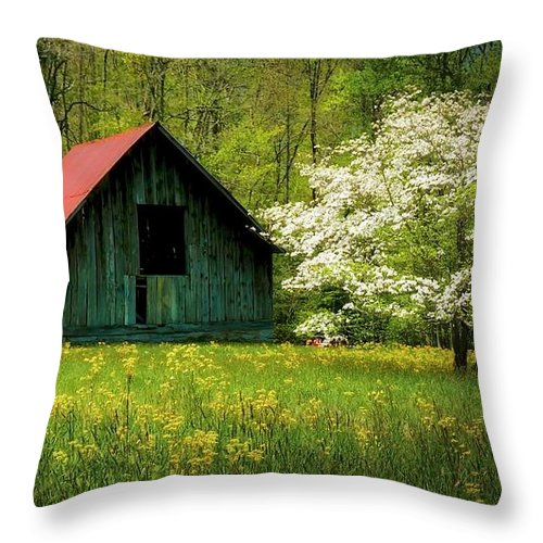 Blue Ridge Mountains Throw Pillow featuring the photograph Spring and the Barn by Zayne Diamond Photographic