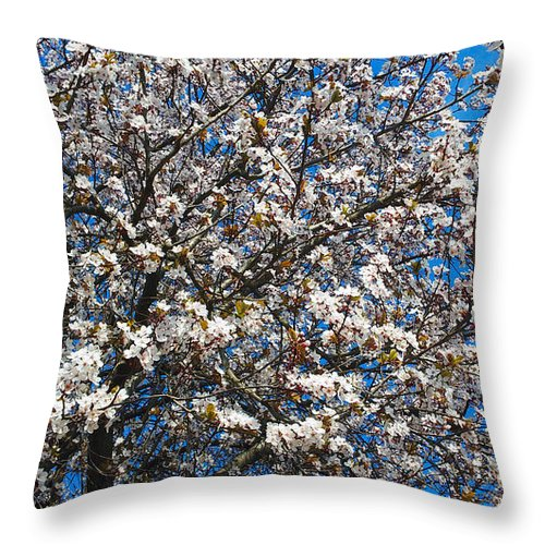 Floral Throw Pillow featuring the photograph Spring As Rhapsody by Jasna Dragun