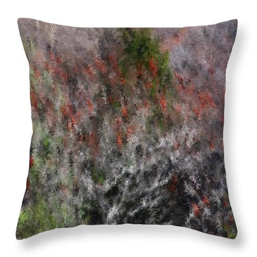 Spring Throw Pillow featuring the photograph Spring At The Hacienda by David Lane