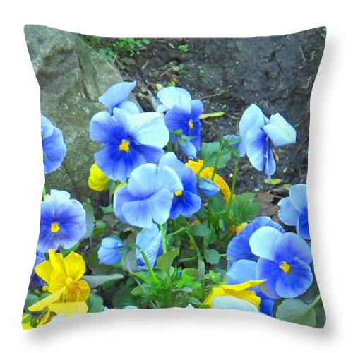 Blue Throw Pillow featuring the photograph Spring Beauties by Ian MacDonald