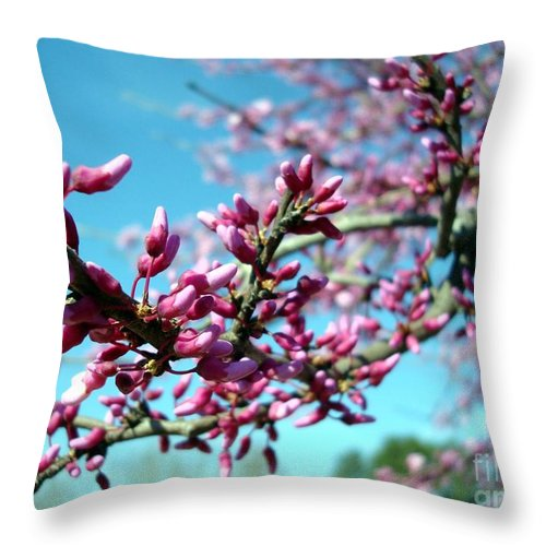 Flowers Throw Pillow featuring the photograph Spring Bliss by Kathy Bucari