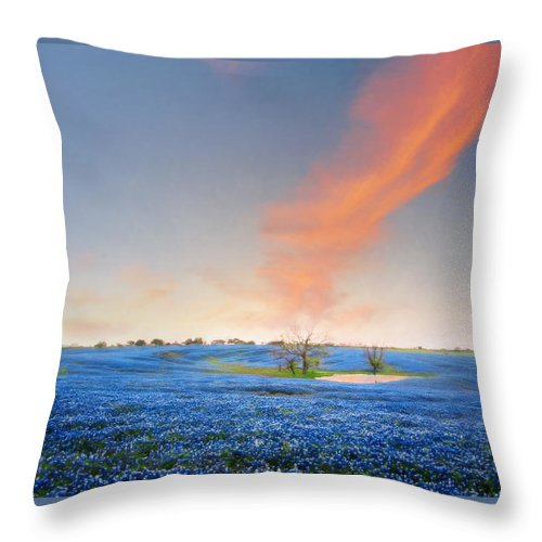 Bloom Throw Pillow featuring the photograph Spring Bluebonnets In Texas by David and Carol Kelly