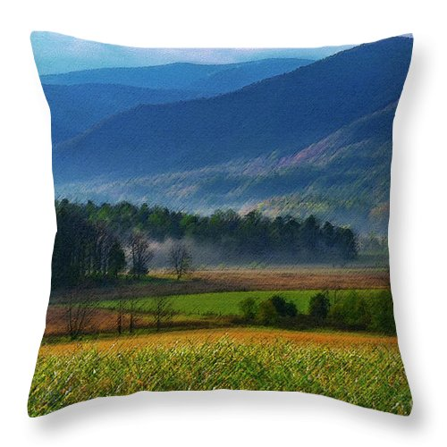 Cades Cove Throw Pillow featuring the photograph Spring Colors In Caves Cove by Bob Phillips