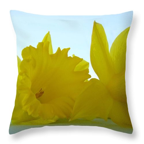 �daffodils Artwork� Throw Pillow featuring the photograph Spring Daffodils Flowers Art Prints Blue Skies by Baslee Troutman