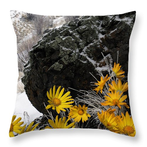 Nature Throw Pillow featuring the photograph Spring Fantasy by Ed Hall