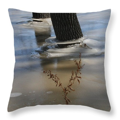 Spring Throw Pillow featuring the photograph Spring Flood by Mary Mikawoz