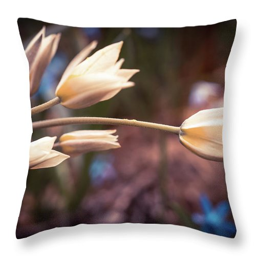 Spring Flowers Throw Pillow featuring the photograph Spring Flowers by Lilia D