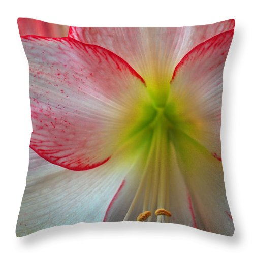 Flowers Throw Pillow featuring the photograph Spring Forth by Donna Shahan