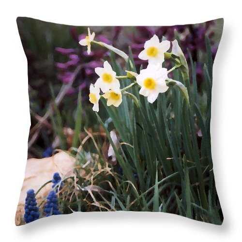 Flowers Throw Pillow featuring the photograph Spring Garden by Steve Karol