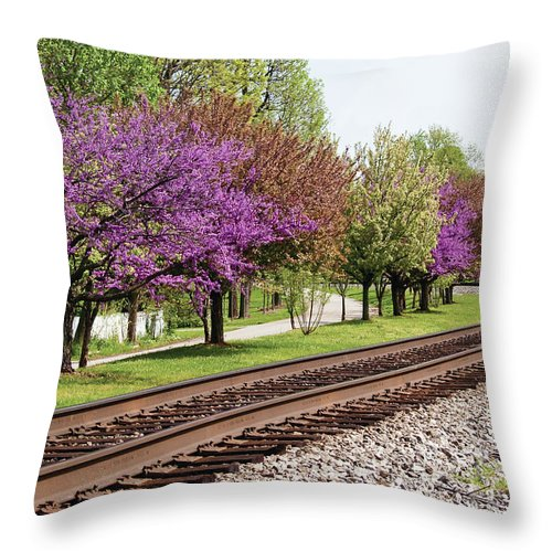 Spring Throw Pillow featuring the photograph Spring In Pewee by Richard Larson