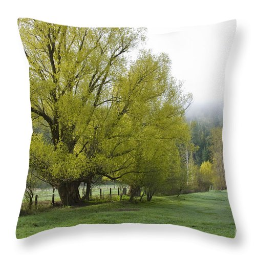 Tree Throw Pillow featuring the photograph Spring Meadow by Idaho Scenic Images Linda Lantzy
