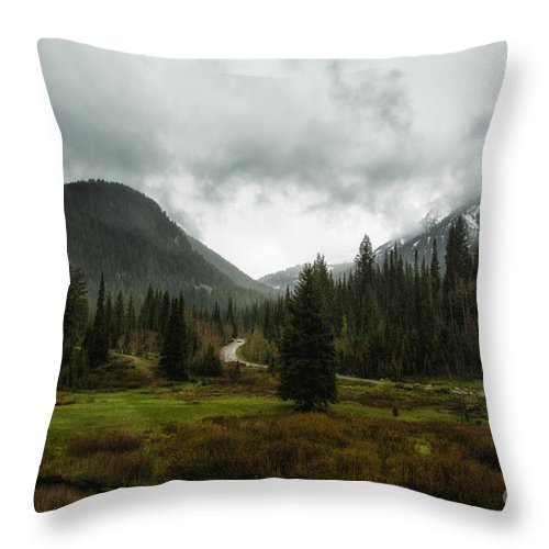 Usa Throw Pillow featuring the photograph Spring Rain In The Wasatch by Mitch Johanson