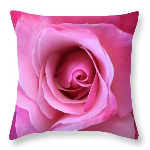 Pink Throw Pillow featuring the photograph Spring Rose by Agnes Felipe