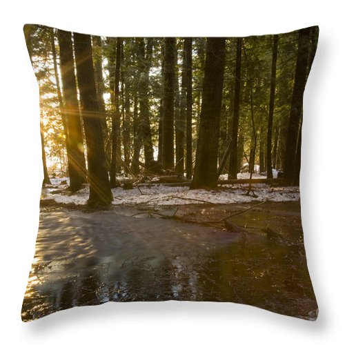 Sunburst Throw Pillow featuring the photograph Spring Thaw by Idaho Scenic Images Linda Lantzy