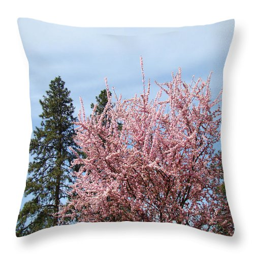 Trees Throw Pillow featuring the photograph Spring Trees Bossoming Landscape Art Prints Pink Blossoms Clouds Sky by Baslee Troutman