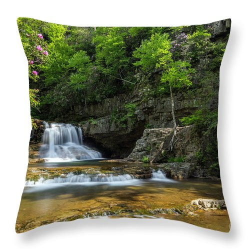 Spring Throw Pillow featuring the photograph Springtime At Saint Mary's Falls Virginia by Karen Jorstad