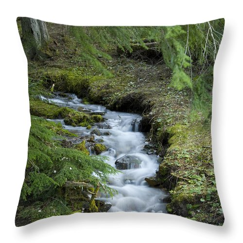 Stream Throw Pillow featuring the photograph Springtime Creek by Idaho Scenic Images Linda Lantzy