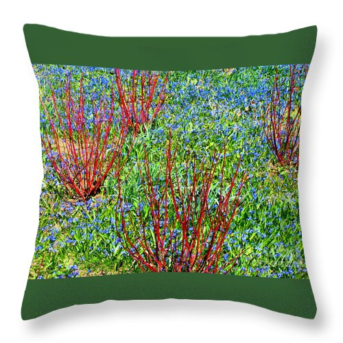 Spring Throw Pillow featuring the photograph Springtime Impression by Ann Horn