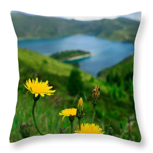 Caldera Throw Pillow featuring the photograph Springtime In Fogo Crater by Gaspar Avila