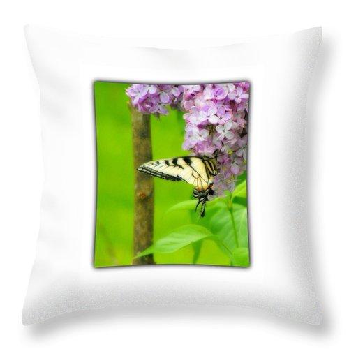 Throw Pillow featuring the photograph Springtime Splendor by Beverly Canterbury