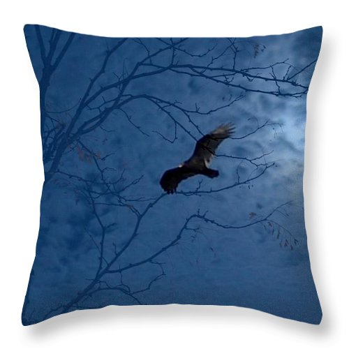 Throw Pillow featuring the photograph Sprit In The Sky by Luciana Seymour