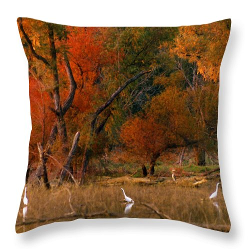 Landscape Throw Pillow featuring the photograph Squaw Creek Egrets by Steve Karol