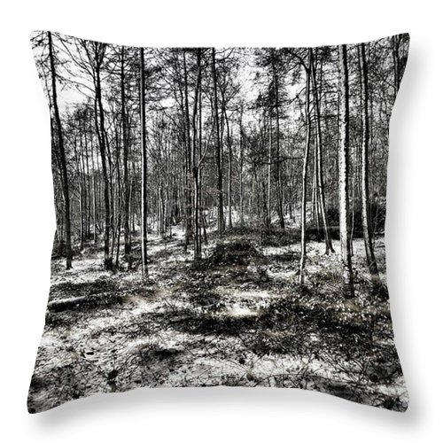 Stlawrenceswood Throw Pillow featuring the photograph St Lawrence's Wood, Hartshill Hayes by John Edwards